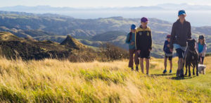 The 3 Best Ways to Move to New Zealand