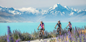 New Zealand voted joint top destinations for British migrants in PSS survey